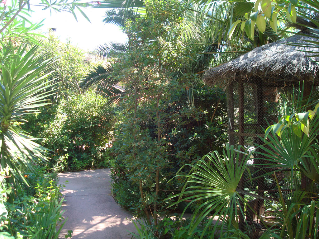 Jardin - Villa Deylof