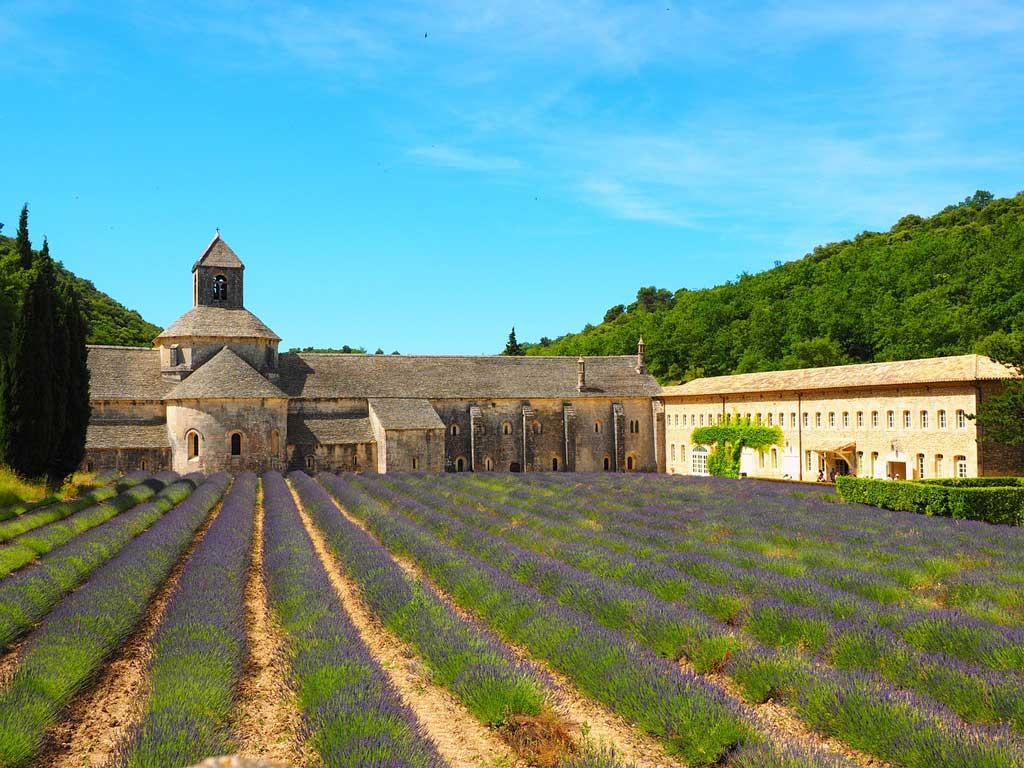 Abbaye de senanque à Avignon