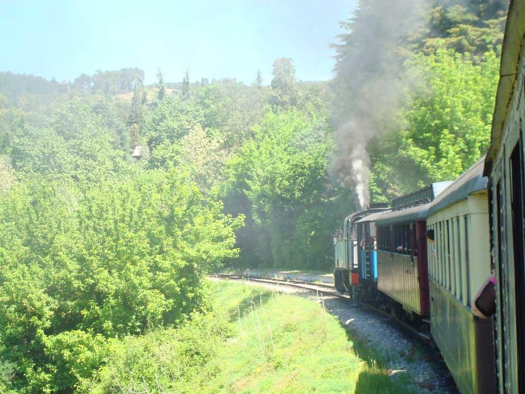 petit train Anduze st Jean du Gard